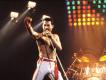 Queen'in şarkıları resmi olarak TikTok'ta!