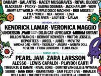 Lollapalooza festivali bu yaz gerçekleşecek gibi.