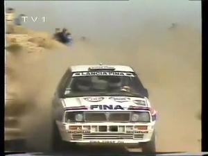 1991 Arjantin Rallisi