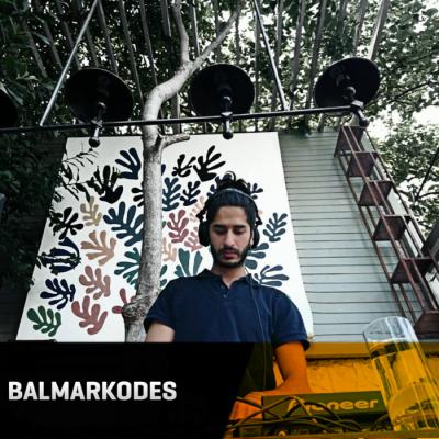 Balmarkodes