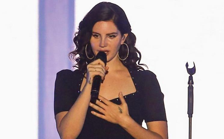 Lana Del Rey'den silahlı saldırılara tepki